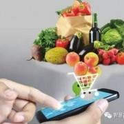 五种模式让你读懂农产品电商的未来