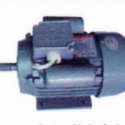 YL系列双值电容电机