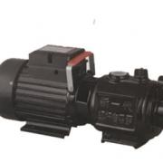 ZGD系列螺杆自吸泵